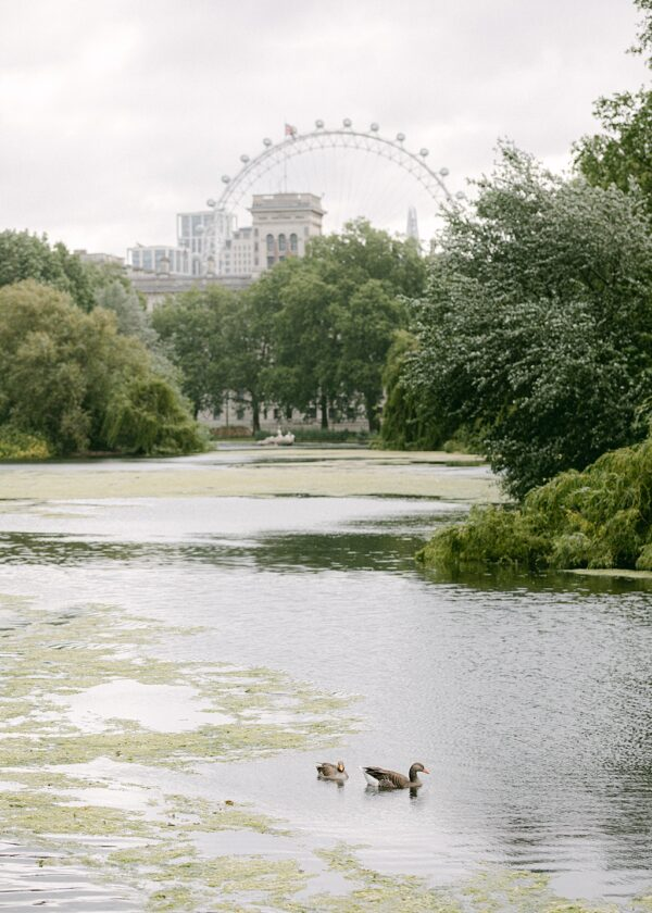 The London Eye from St James Park. Holly Clark Editions.