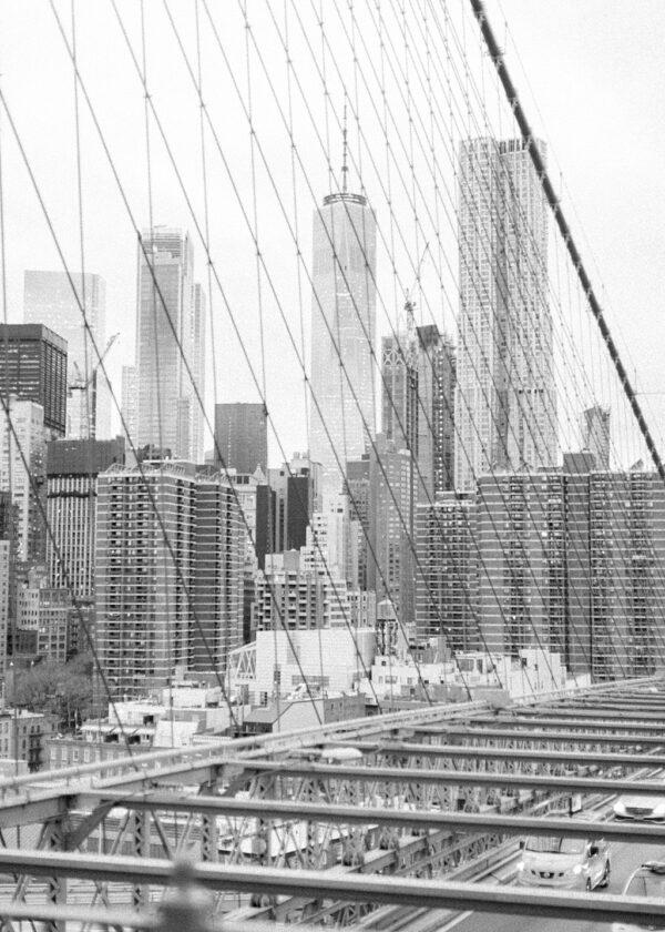 Skyline Views NYC