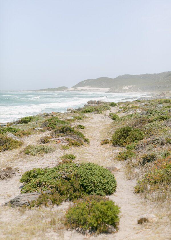 Cape of Good Hope | November 2019 | South Africa
