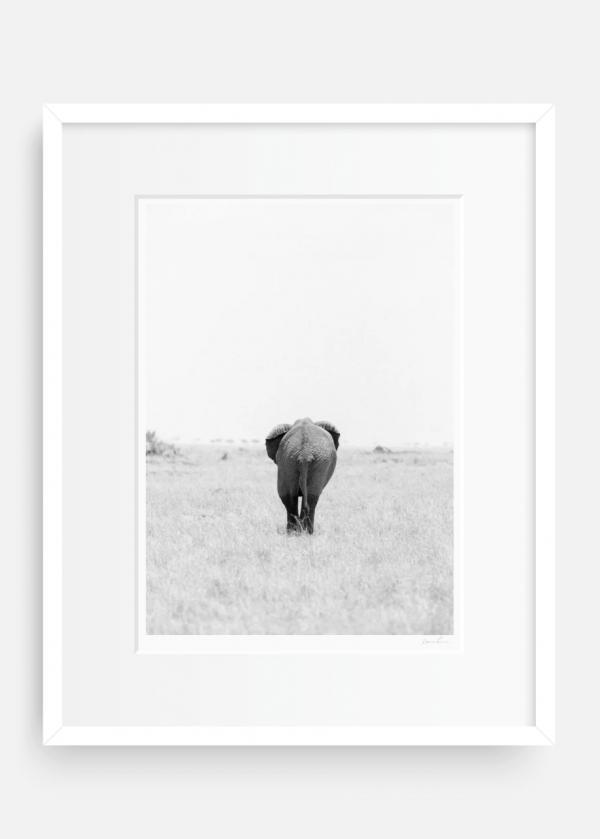 Kenya - Holly Clark Editions. Fine art print shop.