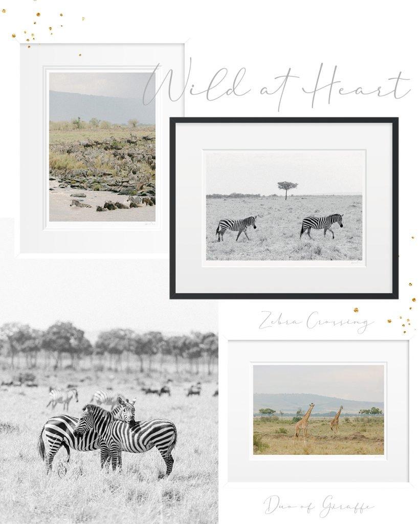 Wild at heart presents - Holly Clark Editions - Fine art print shop.